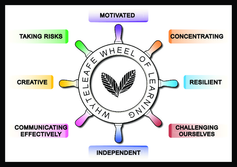 Whyteleafe Wheel of Learning final